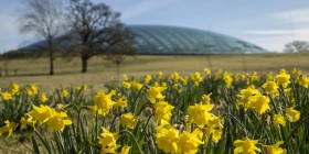 Creative Commons- Attribution (BY): Tim Jones, National Botanic Garden of Wales
